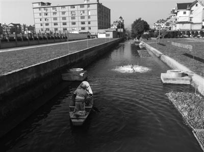 今年江干要实施147个治水项目 消除25条劣五类河道